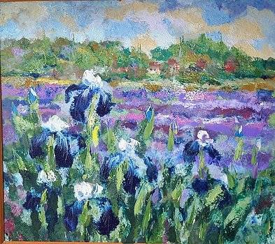 irises-plotnikov-georg